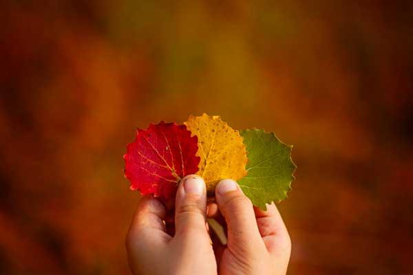 autunno bambini napoli