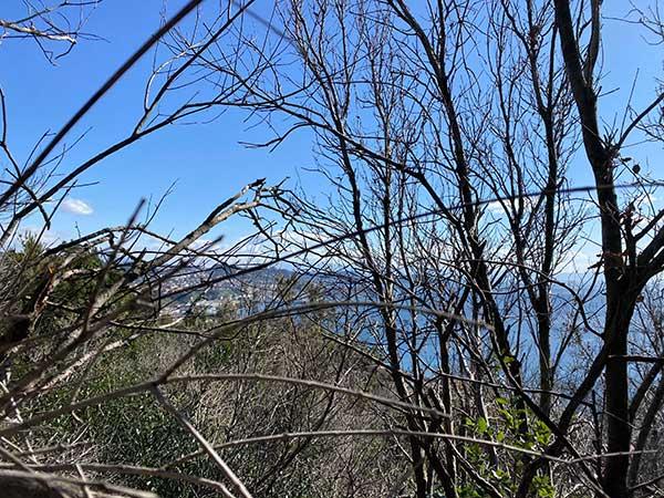 trekking monte nuovo vista