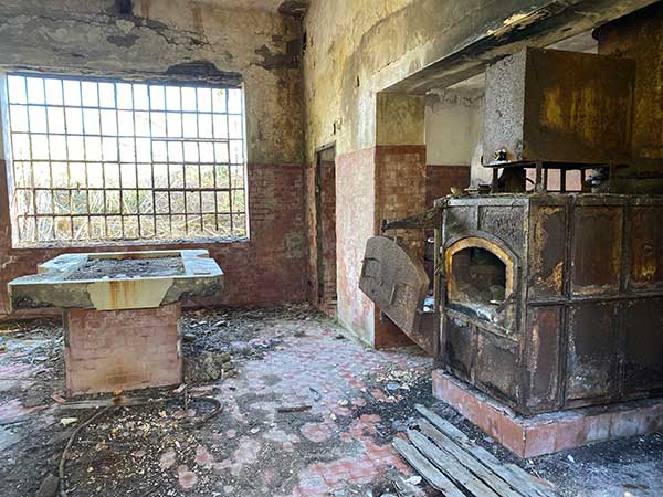 forno crematorio animali