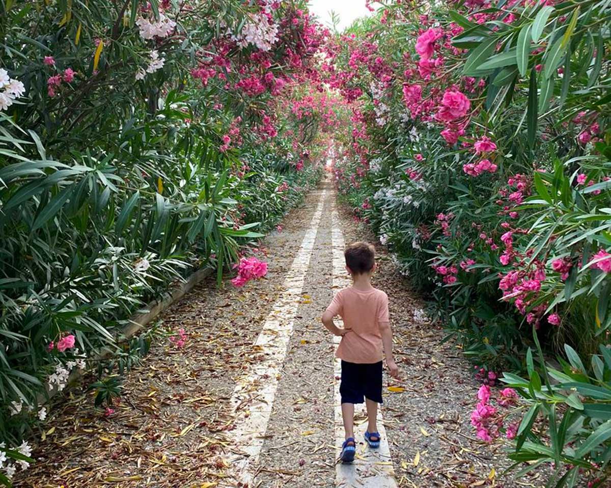 bambino di spalle in un giardino